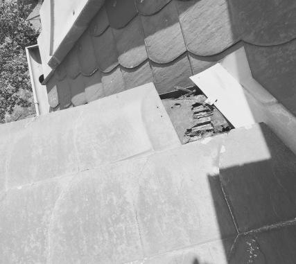 Wasserschaden Dach